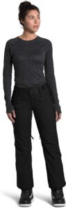 The North Face Freedom Insulated Womens Ski Pants